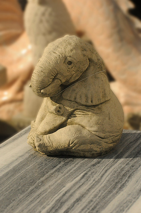 Elephant Trunk Down (AN14)