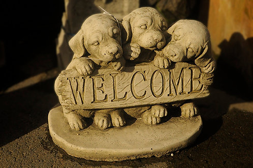 Welcome Puppies (MG4)