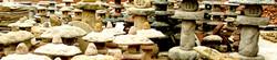 WS bannner stone mushrooms.jpg