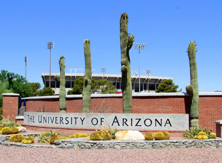 Visiting the University of Arizona