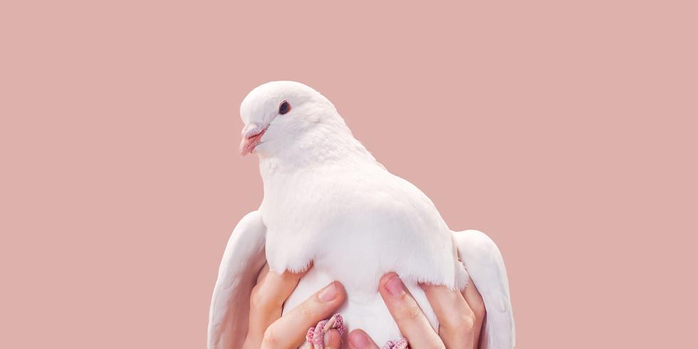 2nd Annual White Dove Release (1)