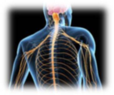 Анализы при болезнях нервной системы в Волгограде