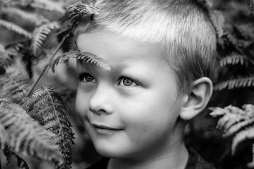 Boy with ferns, Midhurst