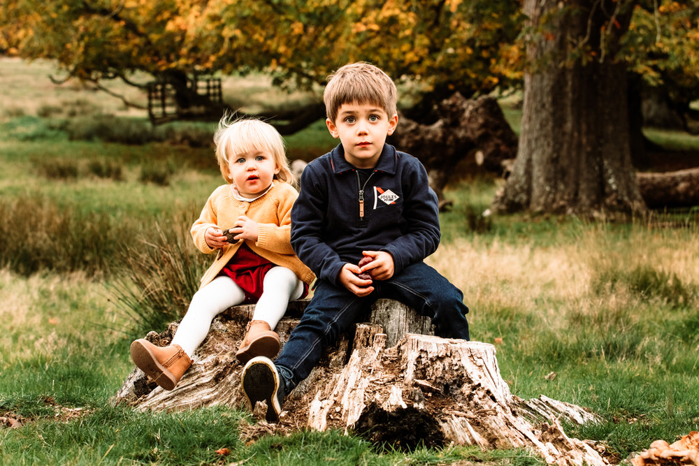 Siblings on tree stump, Petworth Park