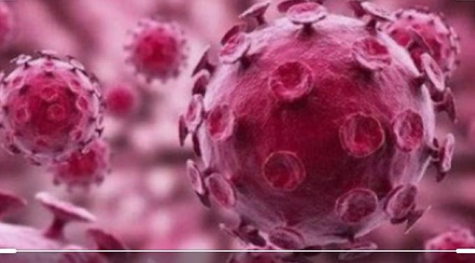9月2日意大利最新新冠病毒数据