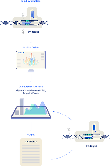 Excision Platform
