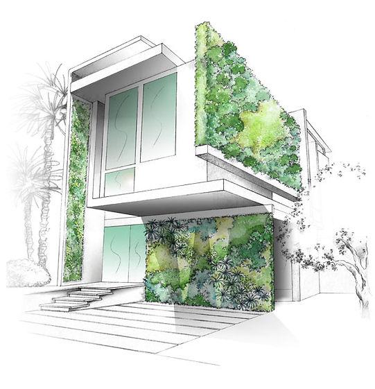 Mur végétalisé sur villa contemporaine