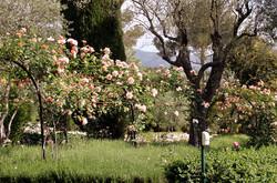 creation_jardin11