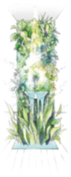 un mur végétalisé adapté à votre climat