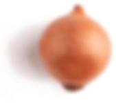 thumbnail_onion1 (2).png