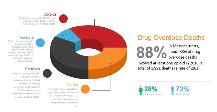 Drug Overdose Deaths pie chart