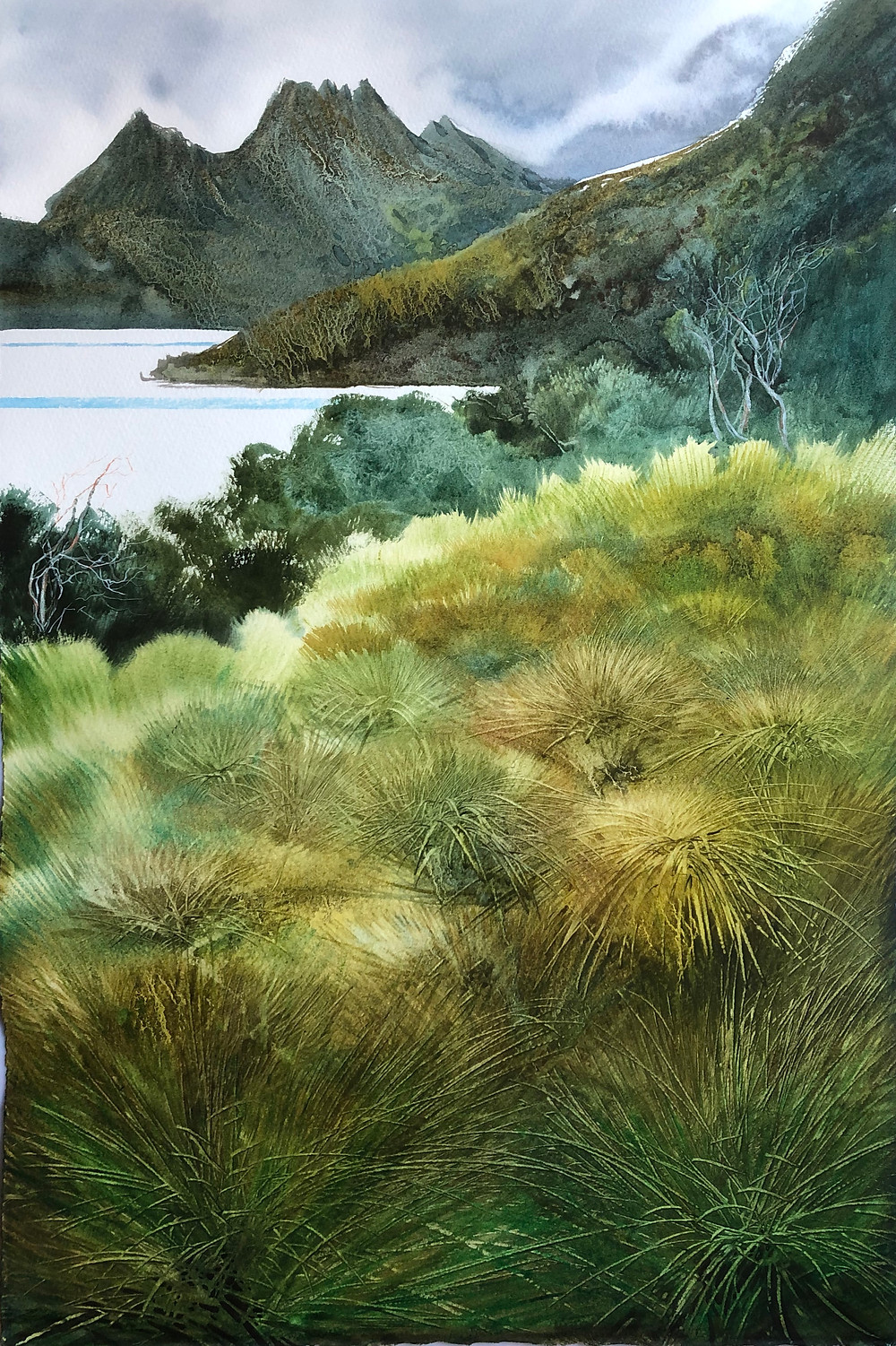 Yesmin Meltem Gozukara 'Button Grass Plains - Cradle Mountain' from August gallery.