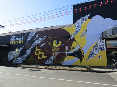 Hawthorn Hawks Mural