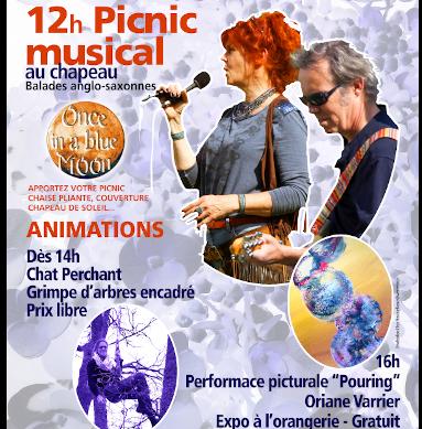 Picnic musical le 11 juillet