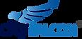 CityFalcon logo.png