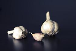 Forage & Farm Hardneck Garlic