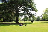 Park-House-School-Field_edited.jpg