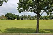 Monks-Lane-Field