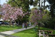 Park-House-School-Site-Enterance-spring.jpg