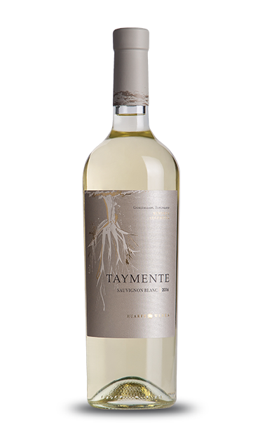 sauvignon-blanc-taymente-2.png