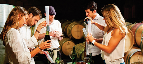 wine tuning.jpg.png