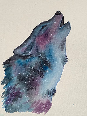 galaxy%20wolf%20-%20Copy_edited.jpg