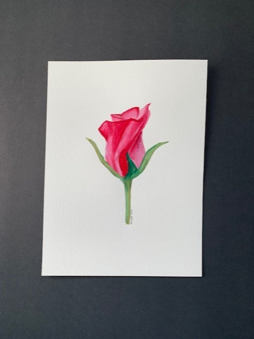ORIGINAL Watercolor Rose