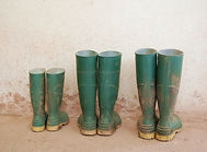 Three dirty green wellies outside the fa