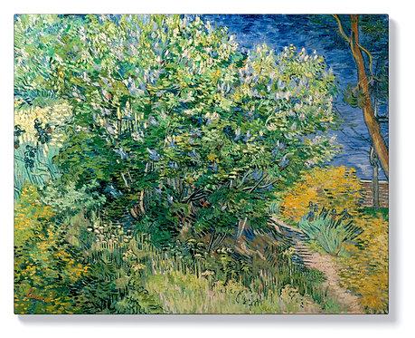 Винсент ван Гог - Люляков храст
