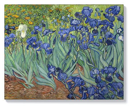 Винсент Ван Гог - Градина с Ириси