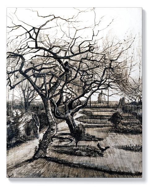 Ван Гог - Градина в Нюенен през зимата