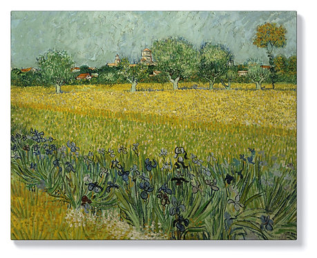 Винсент ван Гог - Поле с цветя край Арл