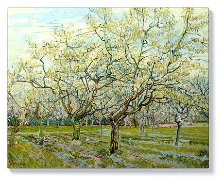 Ван Гог - Бялата овощна градина
