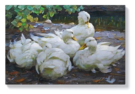Александър Кьостер – Пет почиващи бели патици