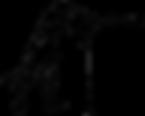 Logo mousquet.png