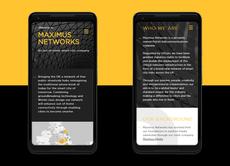 MaxNet Website