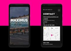 Max Website
