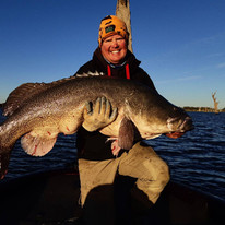121cm Murray Cod caught during 219 Native Classic