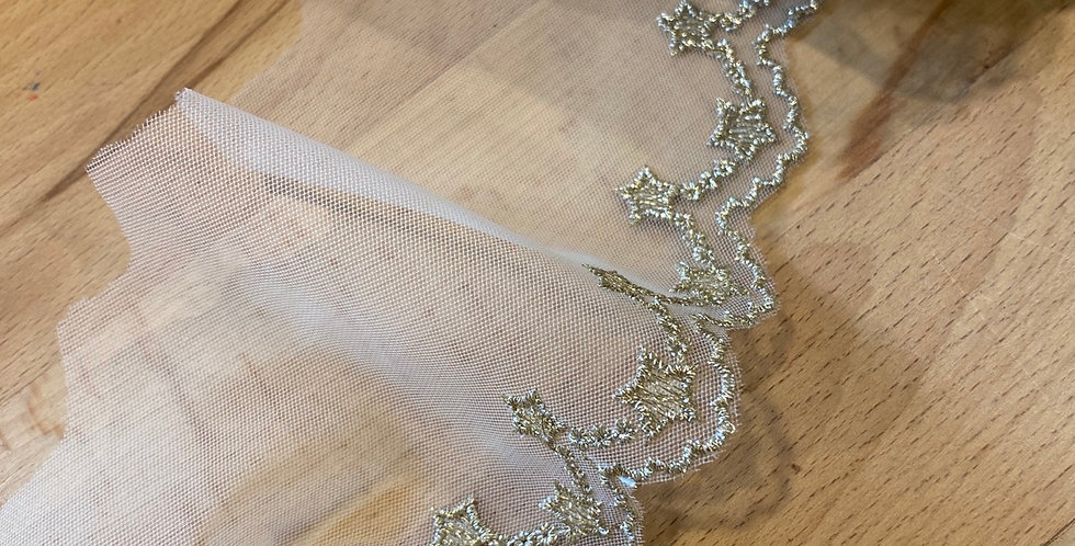 Star struck embroidered trim