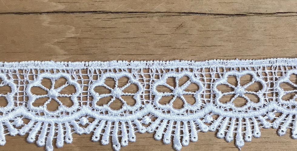 Talia lace