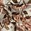 Thumbnail: Family Fabrics Hortensia Rosy Cotton Jersey…