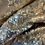 Thumbnail: Golden Two Tone Sequin With a Satin Base...