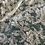 Thumbnail: Pale Cream corded Lace piece #4007