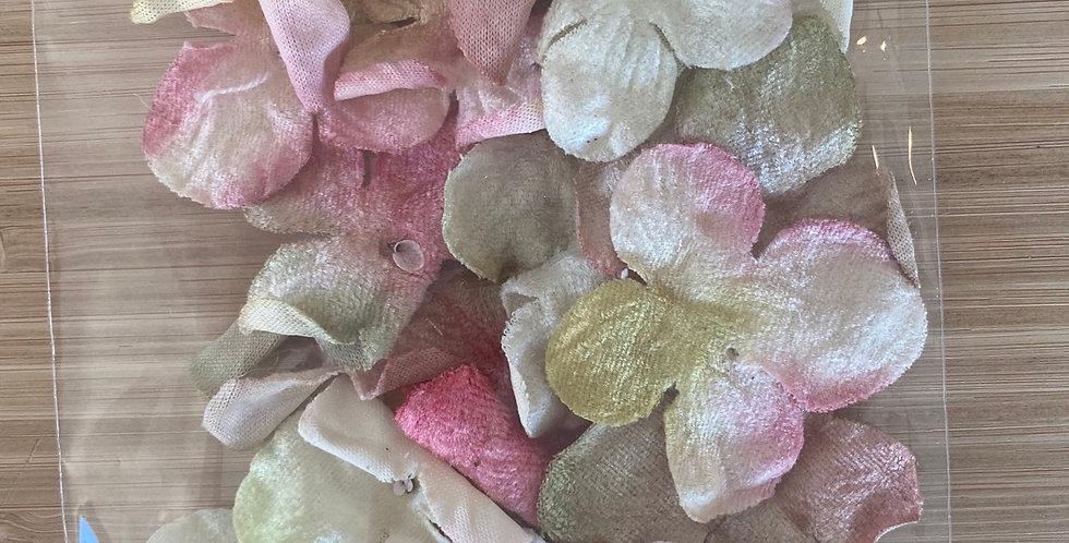 Pink lemon velvet hydrangea pack