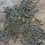 Thumbnail: Ivory / Silver Hand Beaded Tulle Piece J6