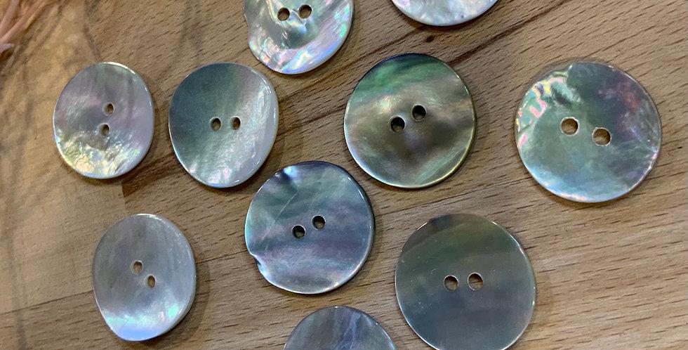 11 Shell Buttons