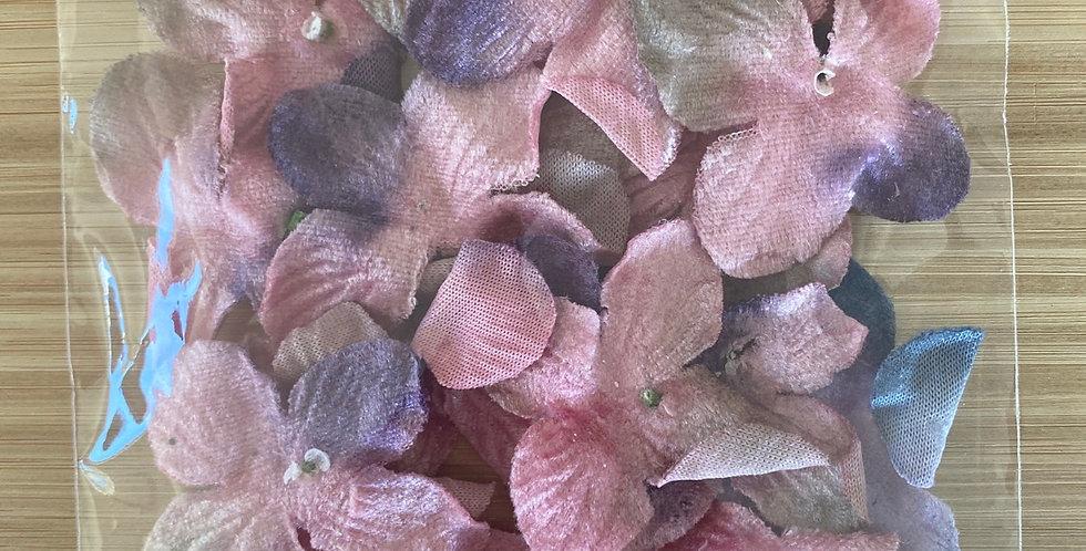 Pink velvet hydrangea pack