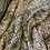 Thumbnail: Khaki Paisley Crinkle Polyester Chiffon