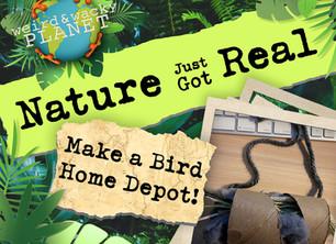 Make a Bird Home Depot!