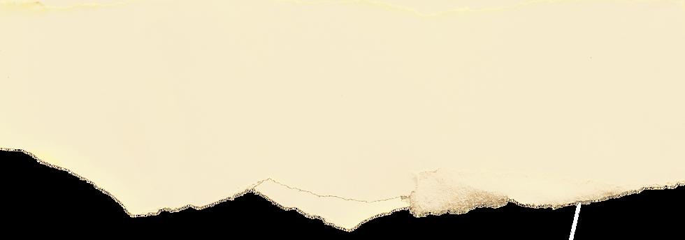 wix header-paper plain.png